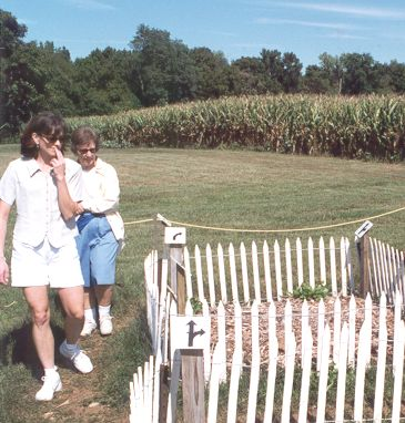 Arrow Maze, Belvedere Plantation, 1999