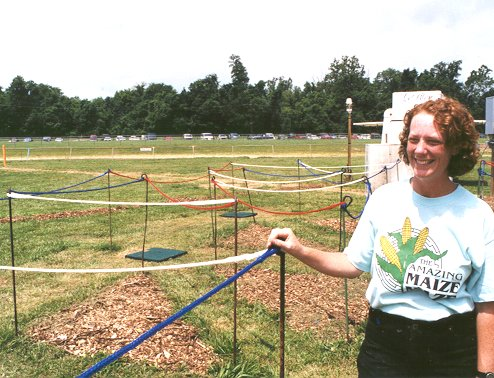 Color maze, Tanglewood 1999