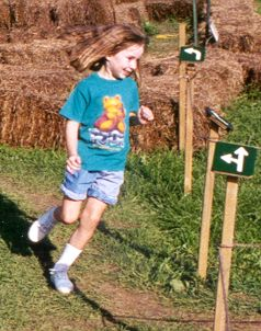 Arrow Maze, Howell Farm, 1999